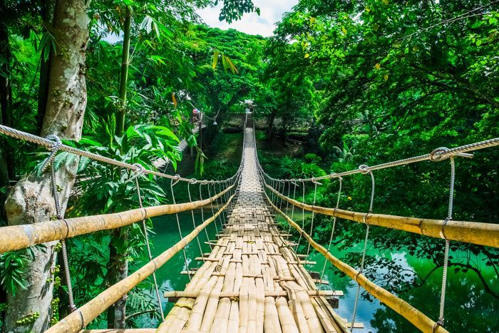 Far East All Inclusive Philippines bridge forest